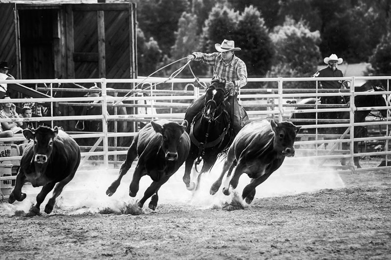 rodeo_bw