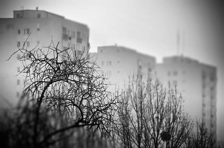 Stary Ursynów - zdjęcia